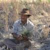 Bill showing plants