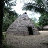 Amazon-ceremonial-hut
